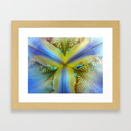 Inside of an Iris Framed Art Print