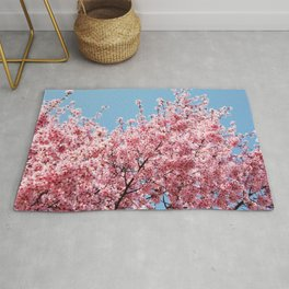 Plum Blossoms Japanese Ume Tree in Early Spring Photography Rug