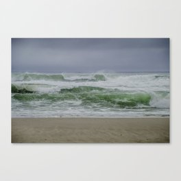 Wild Waves Canvas Print