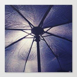 Carbrella Canvas Print