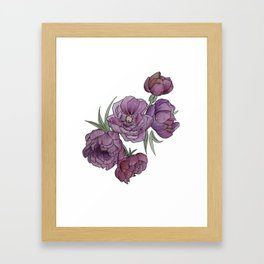 Peonies in Pink and Ink Framed Art Print