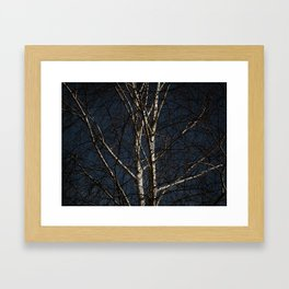 White Tree Framed Art Print
