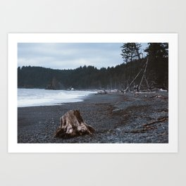 Driftwood on the Cloudy Pacific Ocean Shore Art Print