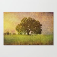 Lonely tree.II Canvas Print