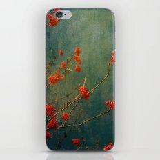 Berry nice iPhone & iPod Skin