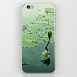 Water Lily Blooms iPhone Skin