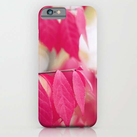 Autumn Splendor iPhone & iPod Case