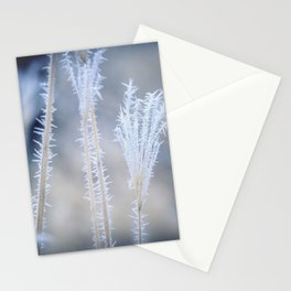 Cold Hoarfrost on the weeds in the winter Stationery Cards