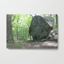 Bear Rock Boulder, Angled View Metal Print