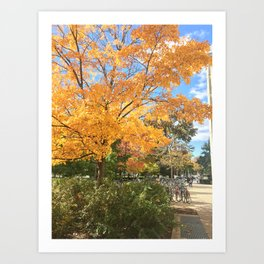 Fall, defined. Art Print
