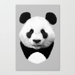 Cute Panda Canvas Print