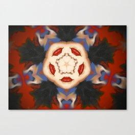 Kaleidoscope C7 Canvas Print