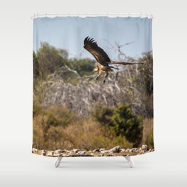 Birds of Namibia 2 Shower Curtain