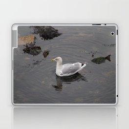 Seagull Laptop & iPad Skin