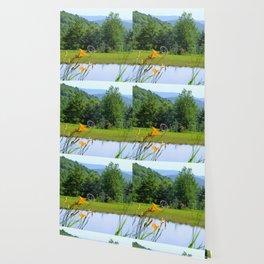 picturesque Wallpaper
