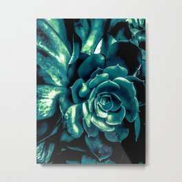 green succulent plant texture background Metal Print