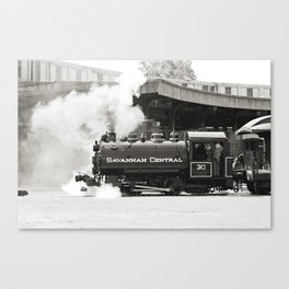 Savannah Train Canvas Print