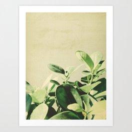 G1 Art Print