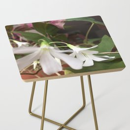 Oxalis Side Table