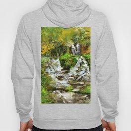 Waterfall Illustration  Hoody