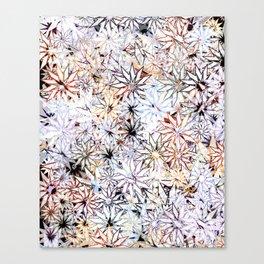 White Dwarf Canvas Print