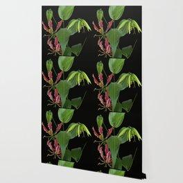 Gloriosa Lily Wallpaper