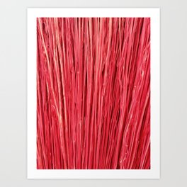 Red Brushwood Photography Art Print