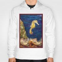 sea horse Hoodies featuring Sea horse by Michelle Behar