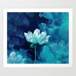 Moonlight Water Lily Art Print