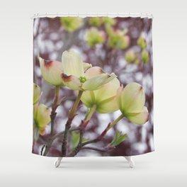 yellow dogwood flowers on black maple bokeh Shower Curtain