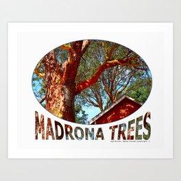 MADRONA TREES 2 Art Print