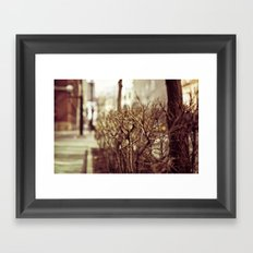 Low POV 1 Framed Art Print
