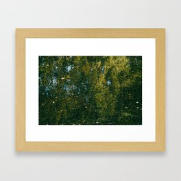 Holme Woods 3 Framed Art Print