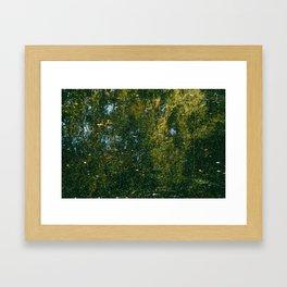 Holme Woods 3 Framed Art Print