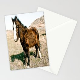 Mini Horse Stationery Cards