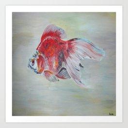 Ryukin Goldfish Art Print