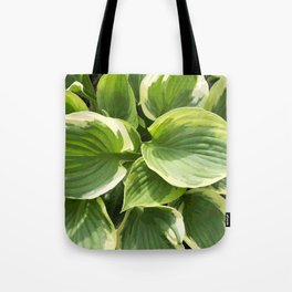 Hosta Plant Tote Bag