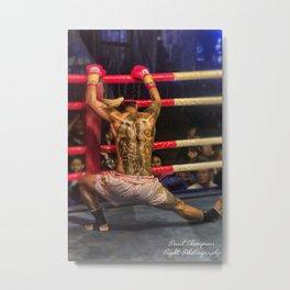 Boxer color Metal Print