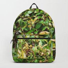 grenn leaves plants Backpack