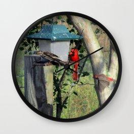 Curious Neighbors Wall Clock