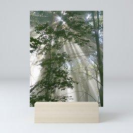 Tree Beams Mini Art Print