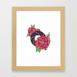 Floral Shutter Framed Art Print