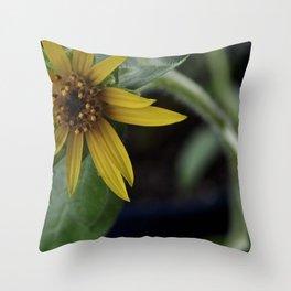 Pot Botany at the Laurels 1 Throw Pillow