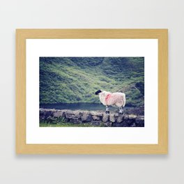 Living on the Edge Framed Art Print