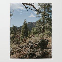 Flagstaff, AZ Poster