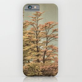 Nature Scene Colored Trees at Glacier Lake- Patagonia Argentina iPhone Case