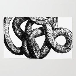 Snake | Snakes | Snake ball | Serpent | Slither | Reptile Rug