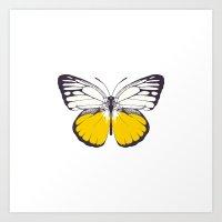 Yellow Butterfly Art Print
