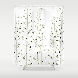 Thlaspi Shower Curtain