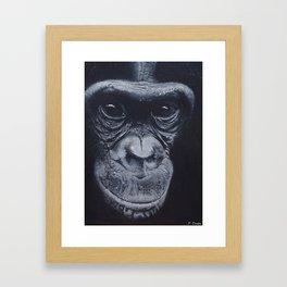 Bonobo Framed Art Print